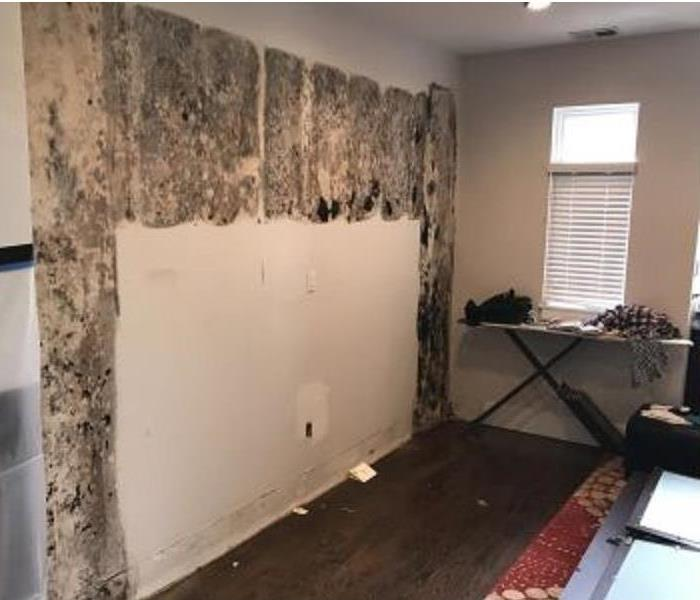 Mold Damage Before