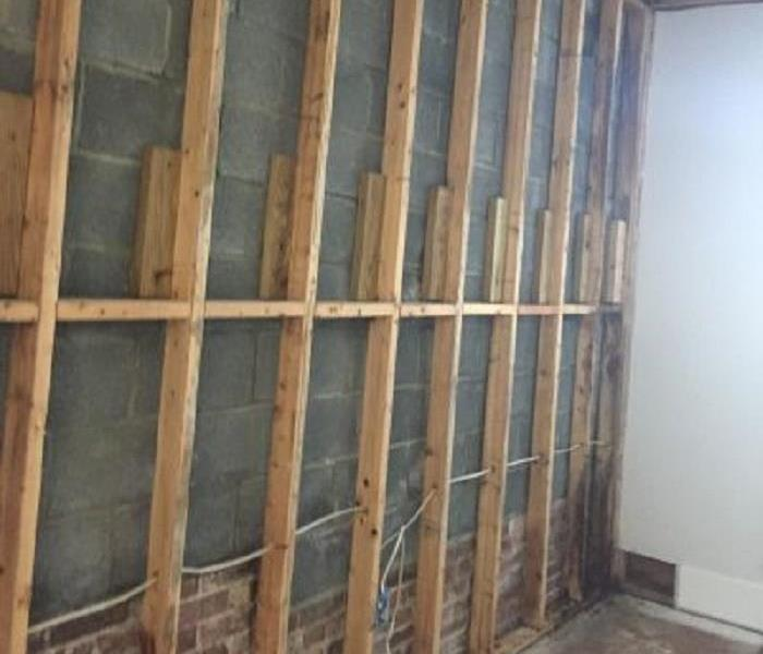 Mold Damage After
